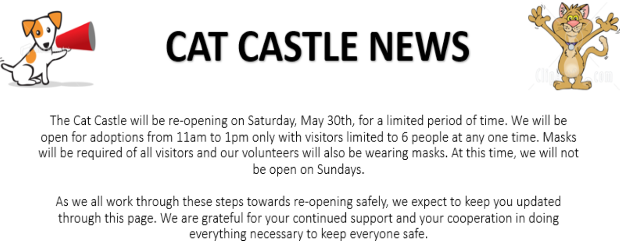 Cat Castle opening COVID v2
